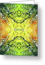 Awakened For Higher Perspective #1423 Greeting Card