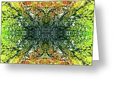 Awakened For Higher Perspective #1426 Greeting Card