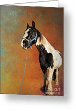 Awesome Gypsy Horse Greeting Card