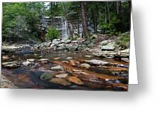 Awosting Falls In July Iv Greeting Card
