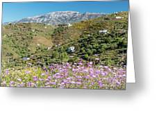 Axarquia In Spring Greeting Card