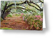 Azalea Alley Greeting Card