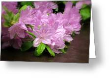 Azalea Bouqet Greeting Card