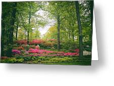 Azalea Hillside Greeting Card