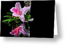 Azalea Times  Two Greeting Card