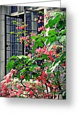Azaleas At The Window   Greeting Card