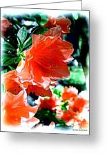 Azaleas In The Spring Greeting Card