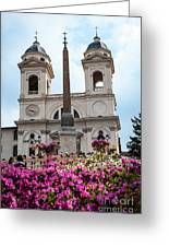Azaleas On The Spanish Steps In Rome Greeting Card