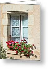 Azay Le Rideau Bridge, Window, Lace Greeting Card