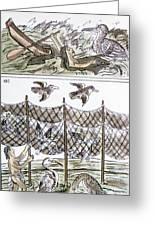 Aztec Fishermen Greeting Card