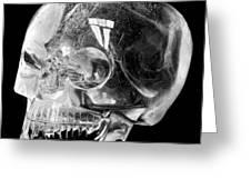 Aztec Rock Crystal Skull Greeting Card