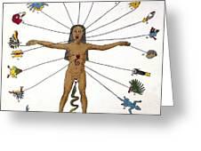 Aztec Zodiac Man, Medical Astrology Greeting Card