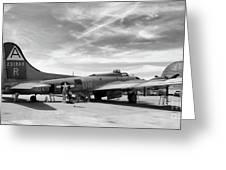 B-17  Black  Greeting Card