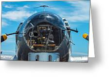 B 17 Snout Greeting Card