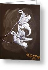 B And W Lily Greeting Card
