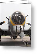 B17 Nose Greeting Card