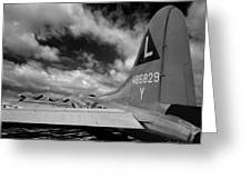 B17 Tail Greeting Card