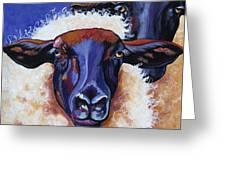Ba Ba Black Sheep Greeting Card
