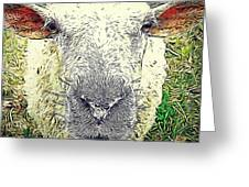 Baaaaaaa Greeting Card