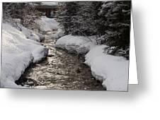 Babbling Brook, Early Spring, Lake Louise, Alberta Greeting Card