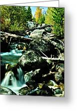 Babbling Brook Greeting Card