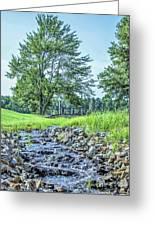 Babbling Creek Greeting Card