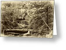 Babcock State Park Wv - Sepia Greeting Card