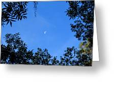 Babcock Wilderness Ranch - Daytime Moon Over Babcock Greeting Card