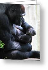 Baby And Momma  Greeting Card