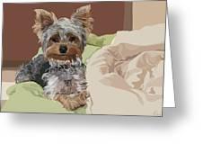 Baby Bedhead Greeting Card