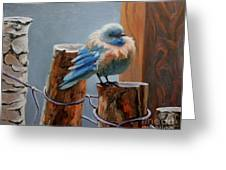 Baby Blue Greeting Card