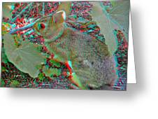 Baby Bunny - Use Red-cyan 3d Glasses Greeting Card