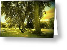 Baby Carriage In A Park Greeting Card