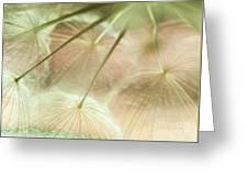 Baby Dandelion Greeting Card