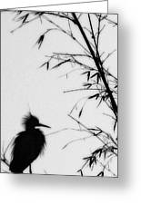 Baby Egret Waits Greeting Card