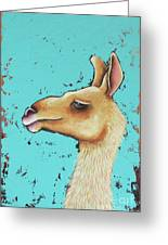 Baby Llama Greeting Card