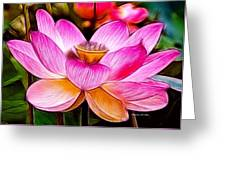 Baby Pink Lotus Greeting Card