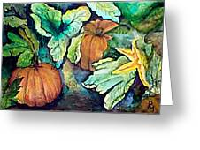 Baby Pumpkins Greeting Card