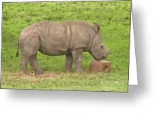 Baby Rhino Chilling Greeting Card