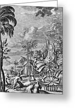 Babylon: Sun Worship Greeting Card