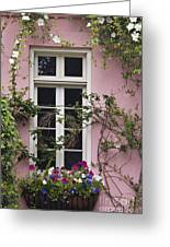Back Alley Window Box - D001793 Greeting Card
