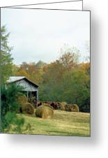 Back At The Barn Greeting Card