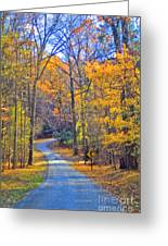 Back Road Fall Foliage Greeting Card