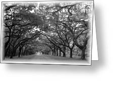 Back Roads Greeting Card by Kim Zwick