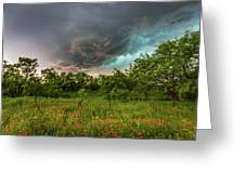 Back To Life - Spring Returns To Western Texas Greeting Card