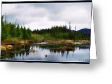 Backcountry Lake - Adirondacks Greeting Card
