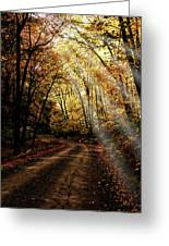 Backcountry Road Greeting Card