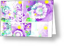 Colour Choice Poppy Collage Greeting Card
