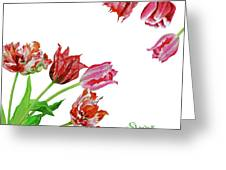 Bouquet Of Tulips Greeting Card