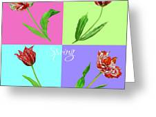 Background With Tulips Greeting Card